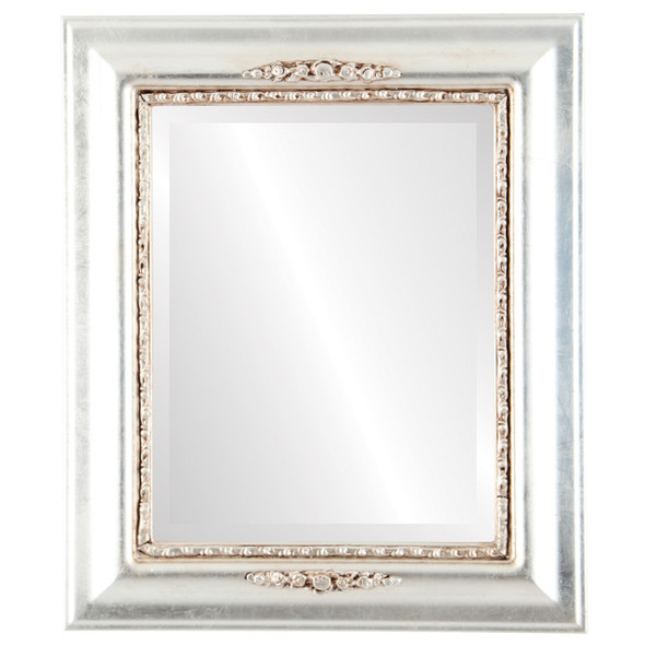 Beveled Mirror - Boston Rectangle Frame - Silver Leaf with Brown Antique