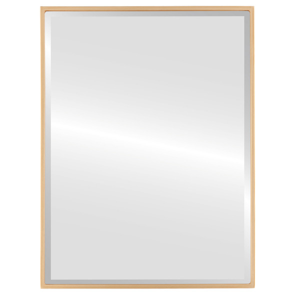 Bevelled Mirror - Singapore Rectangle Frame - Gold Paint