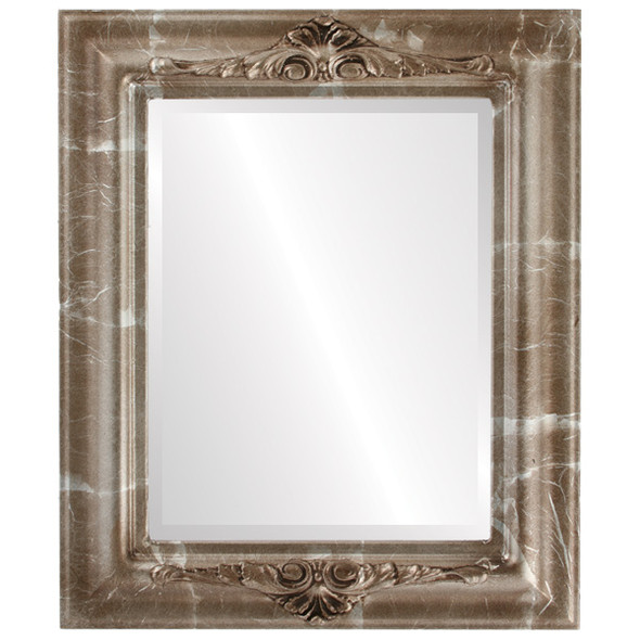 Beveled Mirror - Winchester Rectangle Frame - Champagne Silver