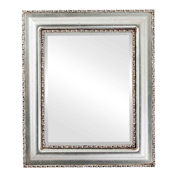 Beveled Mirror - Somerset Rectangle Frame - Silver Leaf with Brown Antique
