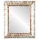 Flat Mirror - Boston Rectangle Frame - Champagne Silver