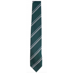 de Ferrers Academy Lower Tie