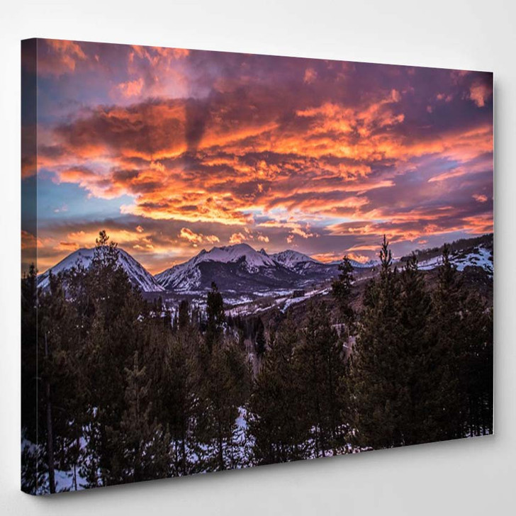 Sunset In The Forest - Nature Canvas Art Print
