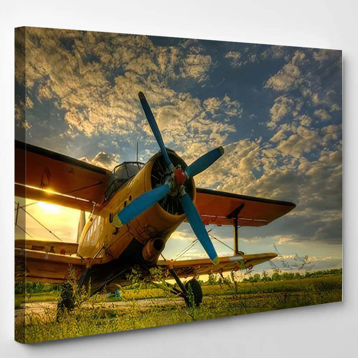 Hdr Foto Old Airplane On Green 1 - Airplane Airport Canvas Art Print
