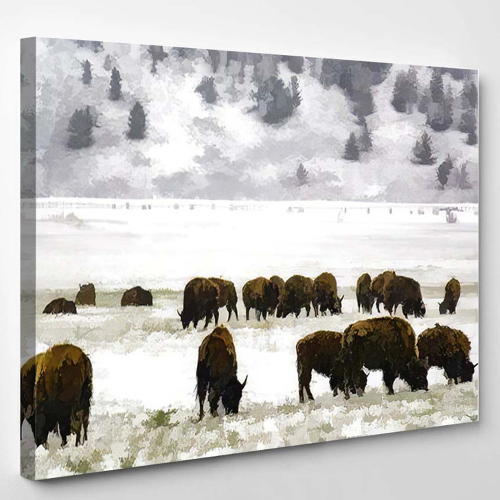 Abstract American Bison Binomial Name Grazing - Bison Animals Canvas Art Print