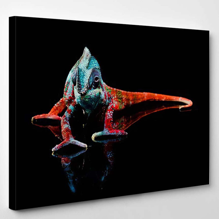 Full Body Shot Colorful Blue White - Black Panther Animals Canvas Art Print