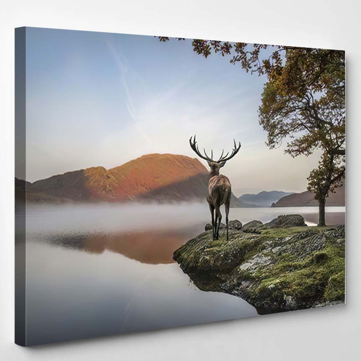 Beautiful Red Deer Stag Looks Out 2 - Deer Animals Canvas Art Print