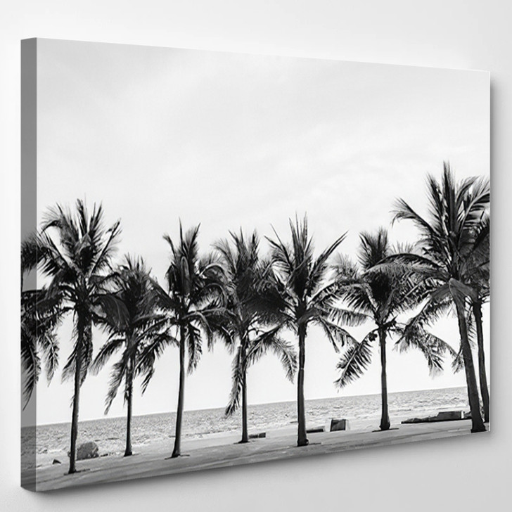 Black White View Of Beautiful Beach With Palms Thailand - Nature Canvas Art Print