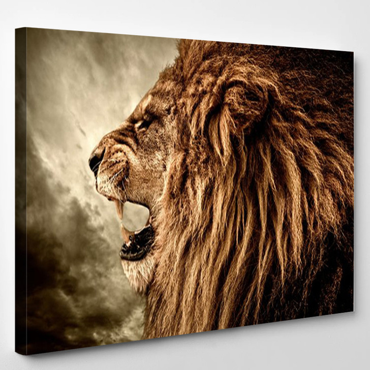 Roaring Lion Against Stormy Sky - Animals Canvas Art Print
