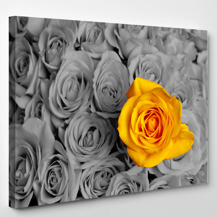 Standing Out In A Crowd Yellow Rose - Nature Canvas Art Print