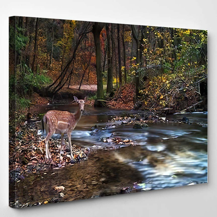 Beautiful Deer Forest River - Hunting and Fishing Canvas Art Print