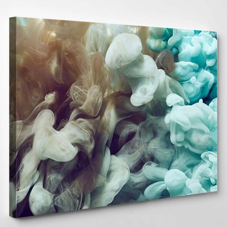 Abstract Ink Splash - Abstract Canvas Art Print