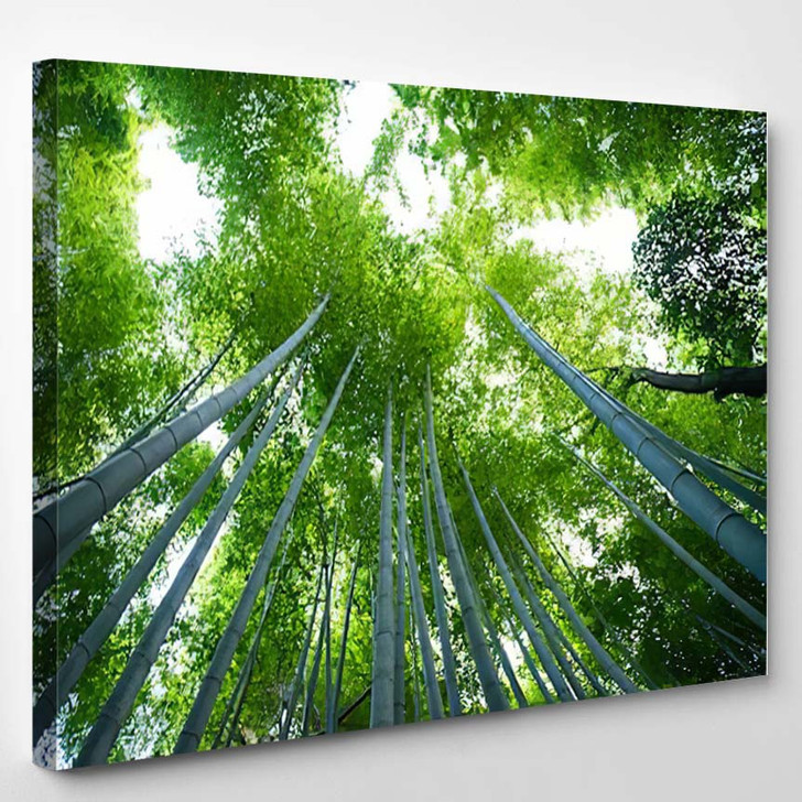 Bamboo Forest Kyoto Japan - Nature Canvas Art Print