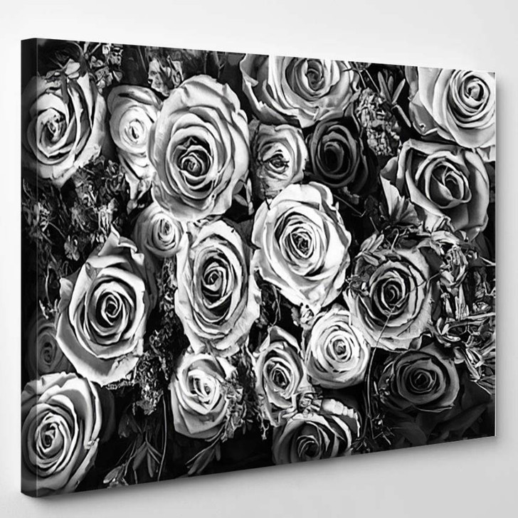 Black And White Background Of Flowers Roses - Nature Canvas Art Print