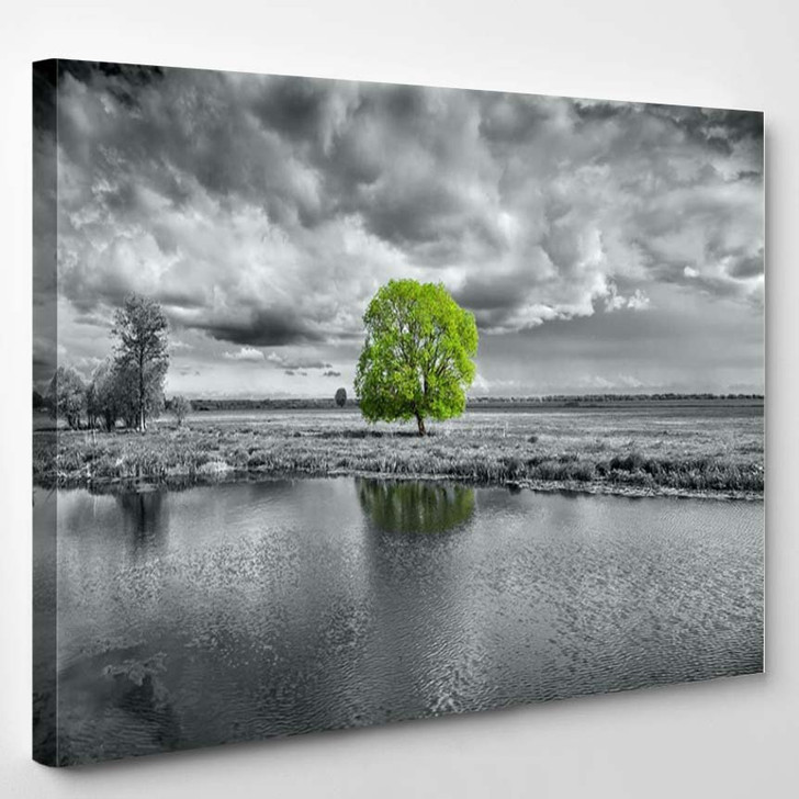 Black And White Landscape And Green Tree 2 - Nature Canvas Art Print