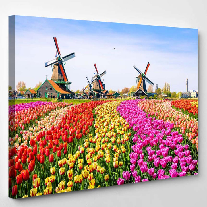 Landscape With Tulips Traditional Dutch Windmills And Houses Near The Canal In Zaanse Schans Netherlands Europe - Landscape Canvas Art Print