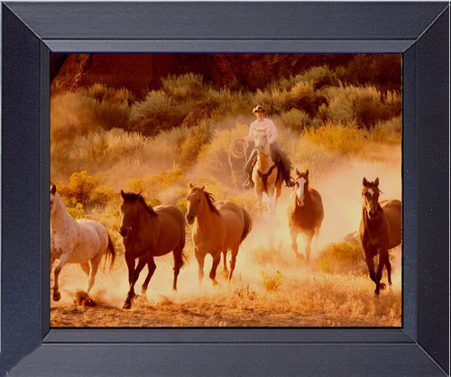 Dusty Sunset Wild Mustang Horses Roundup Framed Art Photograph Print