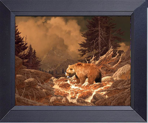 Grizzly Bear Trout Fishing The Streams Of The Rockies Framed Art Photograph Print