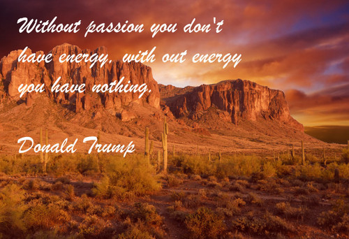Famous Quote Poster  Without Passion You Don't Have Energy, With Out Energy You Have Nothing. Donald Trump
