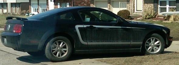 C-Stripe for 2005 - 2009 Mustang
