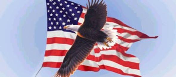 American Flying Eagle