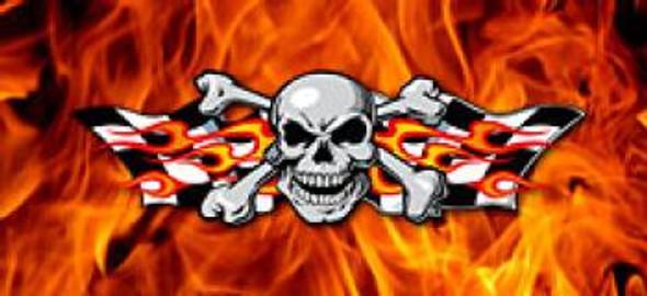 Skull Checker
