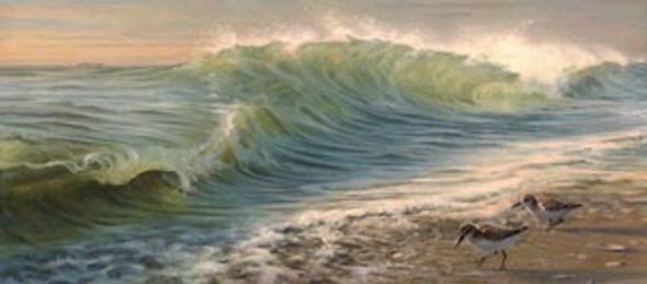 Waves and Sanderlings