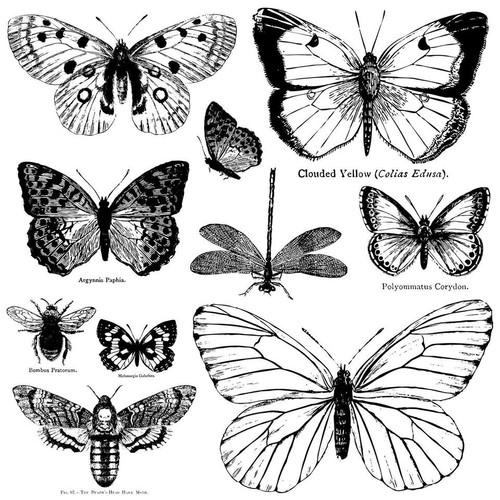 Butterflies 12x12 Decor stamp