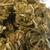 Craft Hemp Flower - 5 grams
