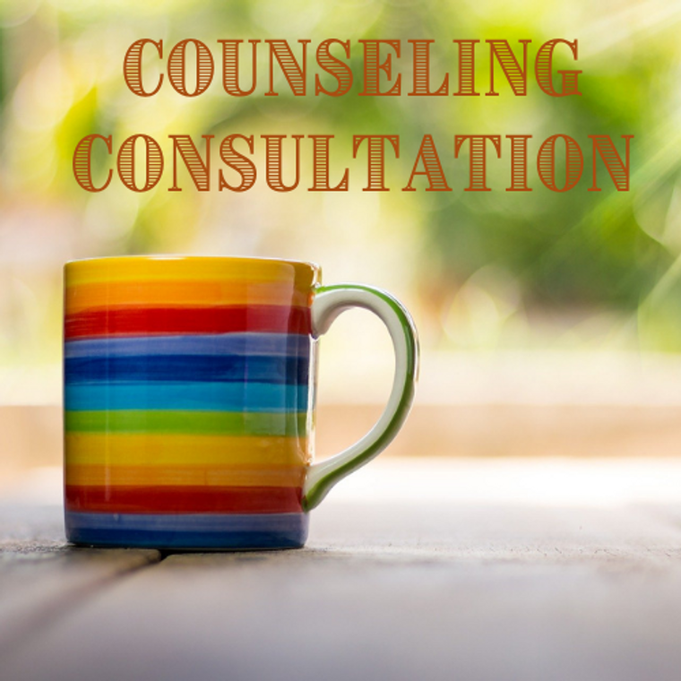 Counseling Consultation