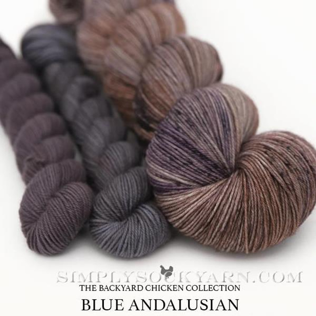 HLoco BYCC Blue Andalusian Hen -