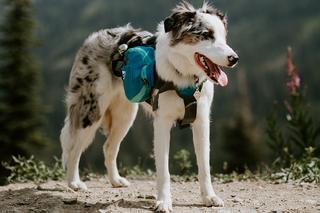 Backpacks and Hiking Gear