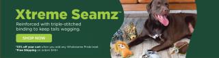 New Product Line: Xtreme Seamz