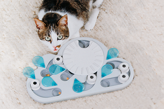 Nina Ottosson Cat Games