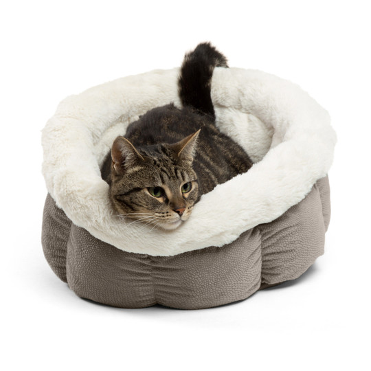 Cozy Ilan Cuddle Cup Dog and Cat Bed, Grey, Standard