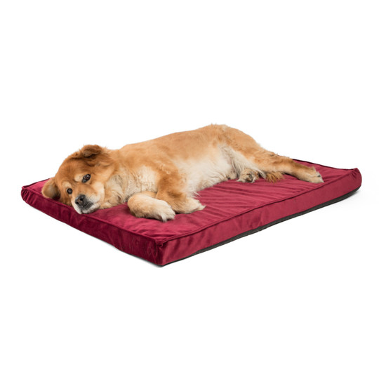 Orthopedic Ilan Floor Nap Mat Dog Bed, Wine, 27X36