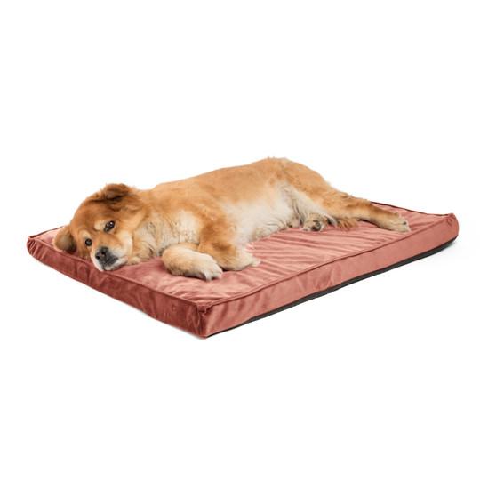 Orthopedic Ilan Floor Nap Mat Dog Bed, Mauve, 27X36