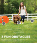 Zip & Zoom Outdoor Dog Agility Training Kit for Dogs, Multi