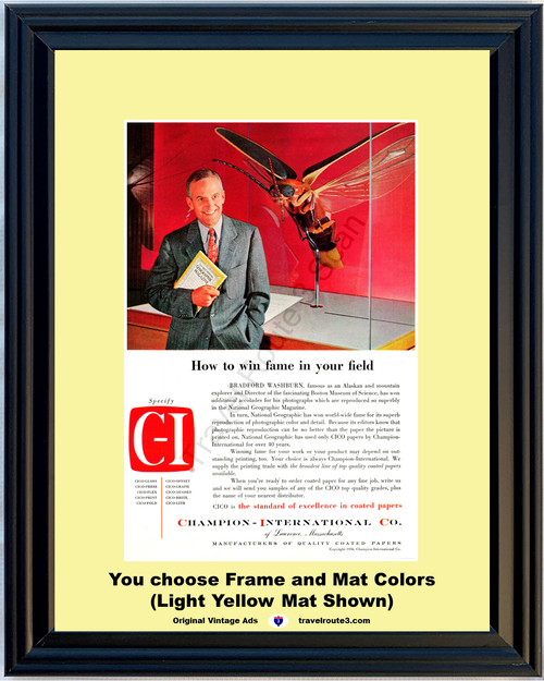 1956 Wasp Boston Museum of Science Vintage Ad National Geographic Champion International Paper C-I 56 *You Choose Frame-Mat Colors-Free USA S&H*