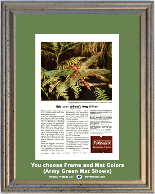 1946 Monsanto Chemicals Plastics Vintage Ad Dragon Fly DDT Insecticide 46 *You Choose Frame-Mat Colors-Free USA S&H*
