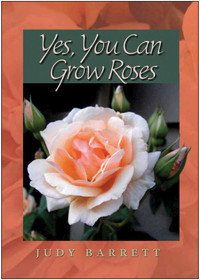 Yes, You can Grow Roses - Judy Barrett