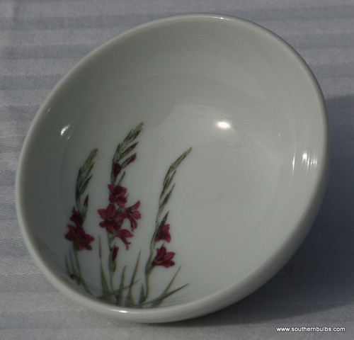 Small dishes are great for holding peppers, salts, wasabi, and other small ingredients. ~Gladiolus design