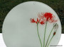 Red Spider Lily design. These exquisite glass chopping boards sing of heirloom bulbs, while being very utilitarian and decorative in the kitchen!