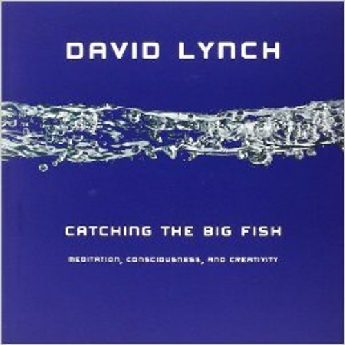 Catching The Big Fish (CD version)