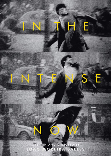 In the Intense Now (region-free DVD)