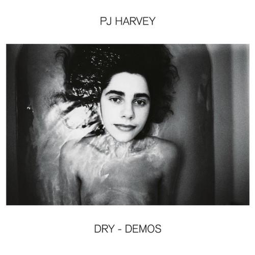 Dry-Demos (vinyl LP w. download)