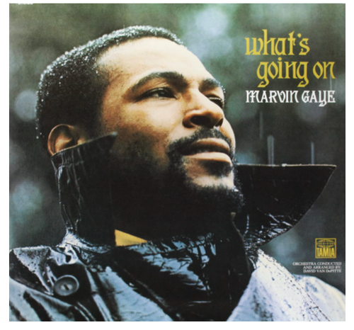What's Going On (vinyl LP)