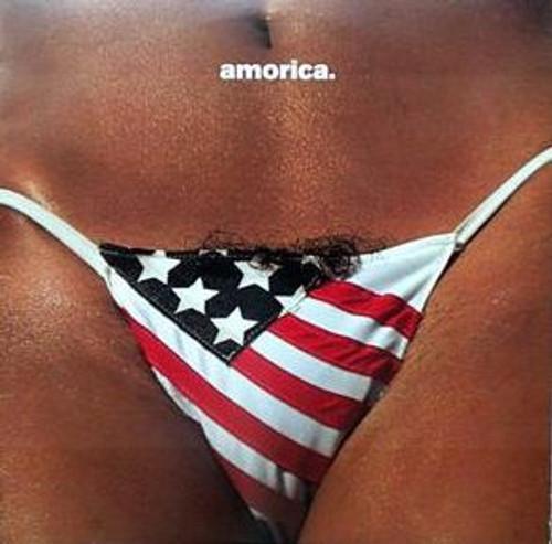 Amorica (vinyl 2LP)