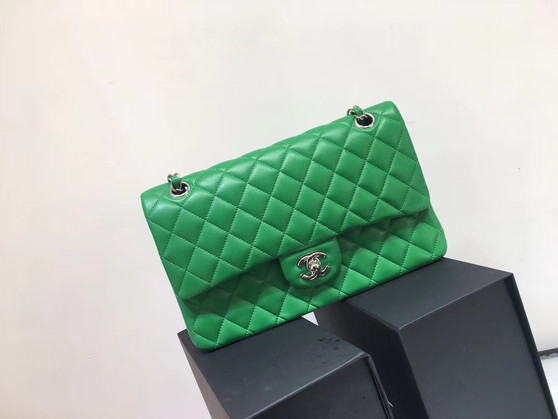 Chanel Classic Flap 25cm Bag Silver Hardware Lambskin Leather Spring/Summer 2018 Collection, Green