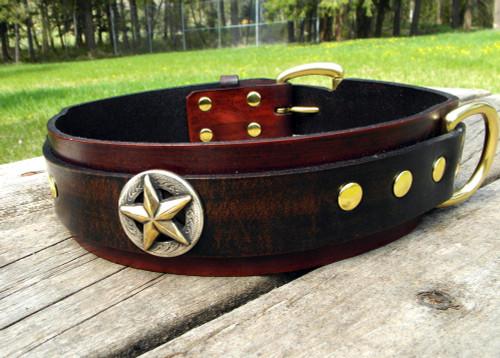Big Star Dog Collar
